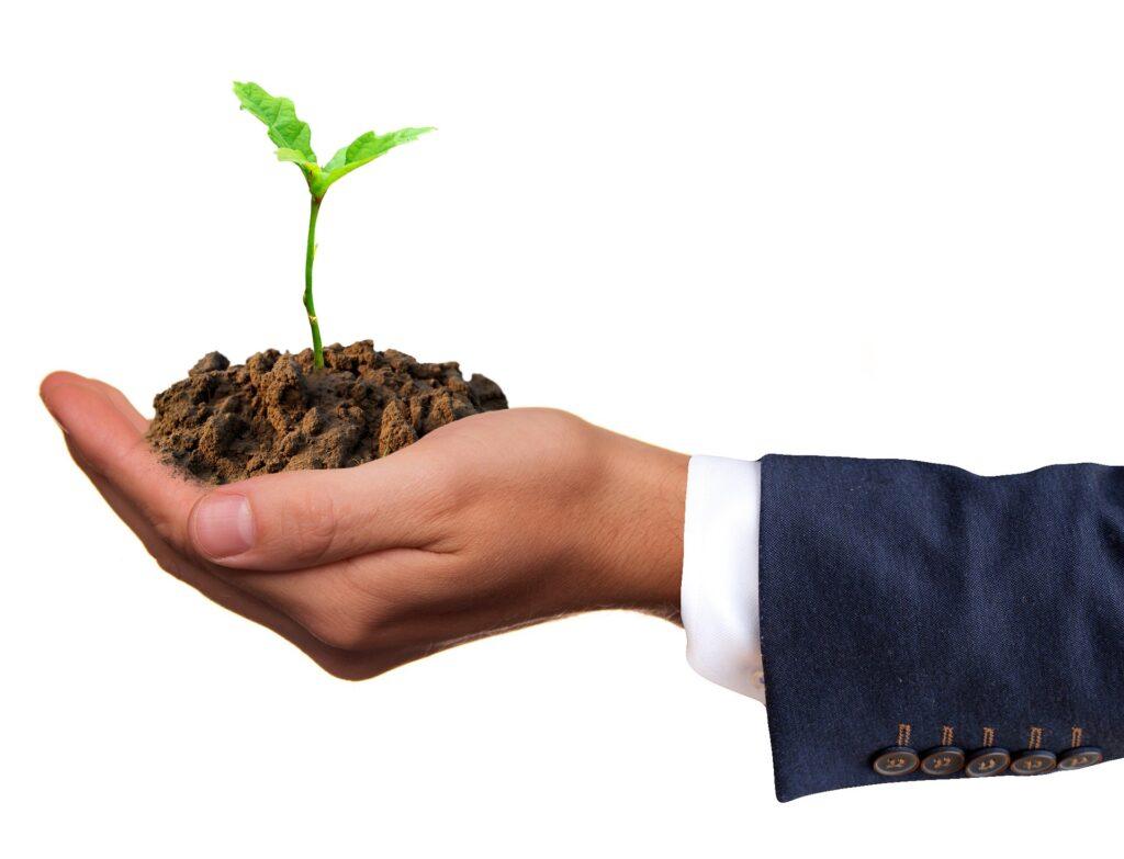 A gente colhe aquilo que a gente planta.